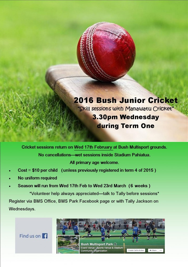 2016 Bush Junior Cricket